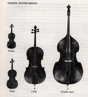 The viola is known for filling in the harmonic gaps between violins and cellos in a string quartet.