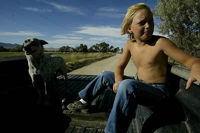 Connor Norton, 8, and his dog Stumpy ride in the back of his grandfather Cecil Garland's truck after rounding up cattle.