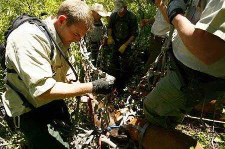 Cody Chamberlain, of the Uinta National Forest Service, wraps a net around the remains of a bear so the body can be lifted out with a helicopter. The bear was killed after it apparently mauled and killed an 11-year-old boy as he slept in his tent in American Fork Canyon the night before.
