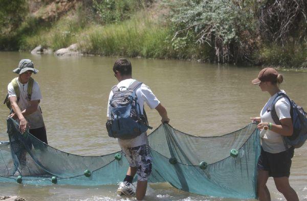 Internship lets utah students help endangered fish the for Lake bryan fishing