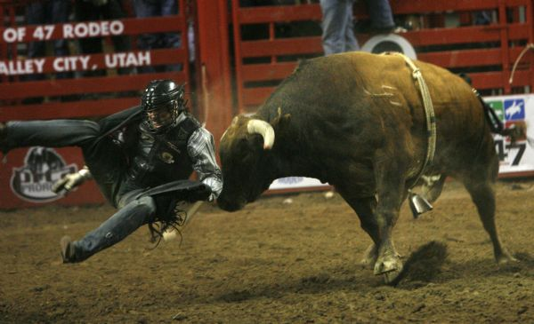 Casey Baise, gets tossed from the bull, in the bull riding competition, on the first night of the Days of 47 Rodeo at the E-Center, Monday.