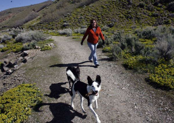 Rick Egan   |  The Salt Lake Tribune   Kimberly Otto-Biebuyck walks with her dogs, Kiebu and Charlie, in the foothills above Salt Lake City,  Friday, May 7, 2010.