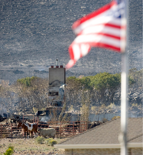 Al Hartmann  |  Salt Lake Tribune