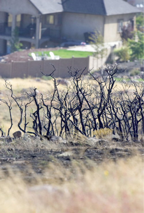 Al Hartmann  |  The Salt Lake Tribune Alternating bands of burned vegetation and unburned grasses seen from the top of Fort Pierce Way in  Herriman on Tuesday September 21st.