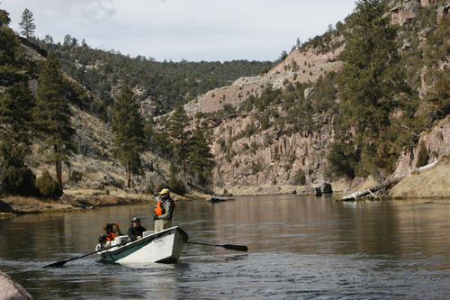 Francisco Kjolseth  |  The Salt Lake Tribune      A section of the Green River near Dutch John in northeastern Utah. A proposed pipeline that would ship water above Flaming Gorge to the Denver area could impact fishing on the Green River.