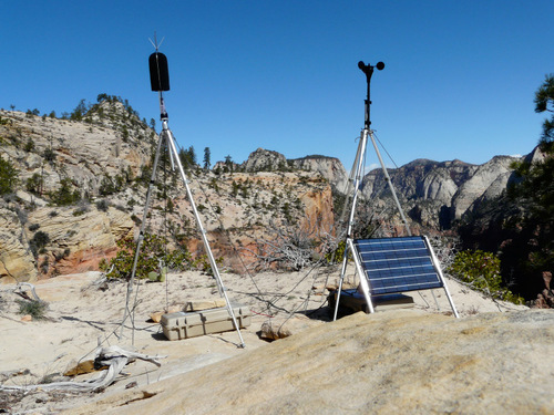 Courtesy Zion National Park