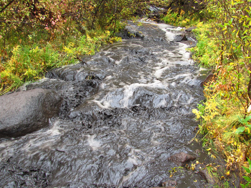 Michael Hadley/Utah Division of Wildlife Resources | Ash runoff in Clear Creek, just above the confluence with Fish Creek on Oct. 5.