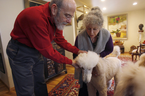 Francisco Kjolseth  |  The Salt Lake Tribune David and Anne Dolowitz of Salt Lake, who both suffer from asthma, round up their standard poodles for their daily walk on Saturday, Nov. 13, 2010. When the inversion sets in they are unable to take their walks because of the aggravating effects.