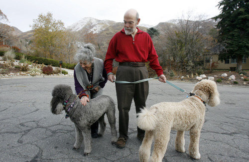 Francisco Kjolseth  |  The Salt Lake Tribune Anne Dolowitz and her husband David of Salt Lake, who both suffer from asthma, take two of their four standard poodles, Gabby, left, and Mr. Wilson for their daily walk on Saturday, Nov. 13, 2010. When the inversion sets in they are unable to take their walks because of the aggravating effects.