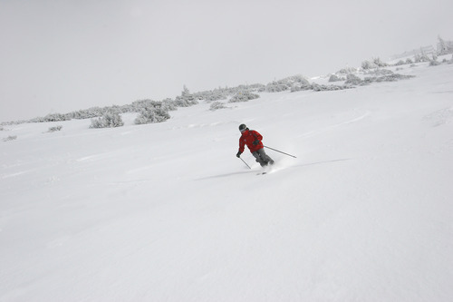 When conditions are like this -- new powder with sunshine peaking through clouds hovering around peaks -- it's easy to see why Snowbird Resort decided Tuesday to move up its opening date by one week to Saturday. Courtesy Snowbird Ski and Summer Resort