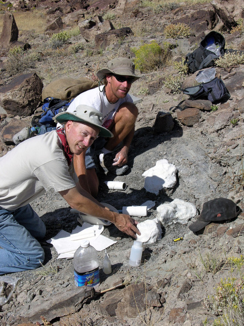 Don DeBlieux of the Utah Geological Survey, back,  and volunteer Ron Long excavate a skeleton of Iguanacolossus, a recently named dinosaur species, near Green River. Photo courtesy of the Utah Department of Natural Resources.