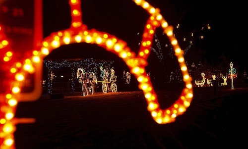 Holidaylights_120510~8.jpg