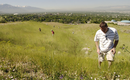 Steve Griffin  |  The Salt Lake Tribune  Volunteers search the foothills below the home of 14-year-old Elizabeth Smart, who was kidnapped from her home June 5, 2002. Hundreds of volunteers showed up to help in the search effort.