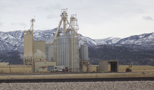 Courtesy Photo This year, the Moroni Feed Company's plant is heading toward a record year -- expecting to process 100 million pounds of turkey and posting a $4 million profit.