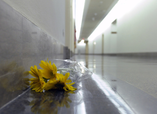 A lone bunch of flowers lays on the floor near the Capitol Hill office of Rep. Gabrielle Giffords, D-Ariz., Saturday, Jan. 8, 2011, on Capitol Hill in Washington. Giffords was shot in the head Saturday in her district in Arizona. (AP Photo/Susan Walsh)