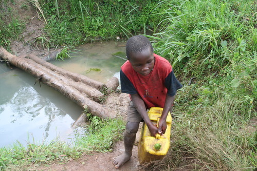 Jeremiah Stettler | The Salt Lake Tribune Using a banana to keep the water from spilling, a southern Ugandan boy lugs a five-gallon jug of water from a pond near his village. The LDS Church recently spent $250,000 to improve the water in this African nation.