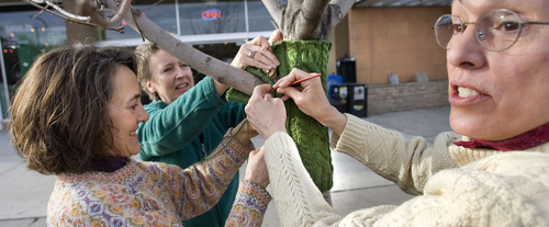 Al Hartmann   |  The Salt Lake Tribune Lisa Sewell, left, Sheryl Gillilan and Ellen Christensen finish up a sweater on a small tree in front of the Coffee Garden in Salt Lake City. A passer-by told the three knitters that the tree could have really used the sweater a couple months earlier. The Utah Arts Festival is starting a campaign in which rogue knitters perform