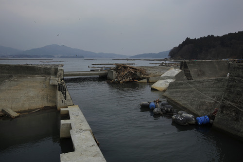 In this March 30, 2011 photo, wooden debris is trapped on a sea wall badly damaged by the March 11 tsunami in Rikuzentakata, Iwate Prefecture, northeastern Japan. Modern sea walls failed to protect coastal towns from Japan's destructive tsunami last month. But in the hamlet of Aneyoshi, a single centuries-old tablet that warns of the danger of tsunamis saved the day. Hundreds of such markers dot the coastline, some more than 600 years old. (AP Photo/Vincent Yu)