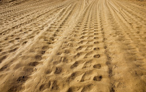 Djamila Grossman  |  The Salt Lake Tribune  Tire tracks are seen in the sand on the Fins & Things 4x4 trail near Moab on Saturday, Oct. 2, 2010.