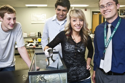 Chris Detrick | The Salt Lake Tribune  Keltson Howell, Nikos Liodakas, Megan Dolle and physics teacher Jonathan Miller worked on an experiment that went into space with the shuttle Endeavour.