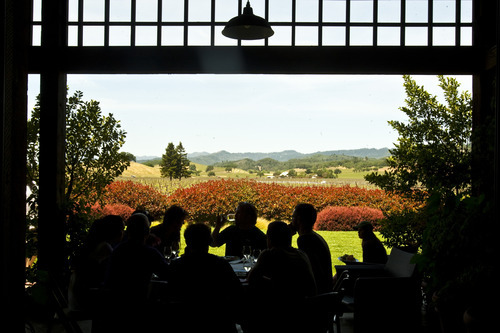 Chris Detrick | The Salt Lake Tribune  Lunch at Honig Vineyard and Winery in Napa Valley, Calif., on Thursday, May 5, 2011.