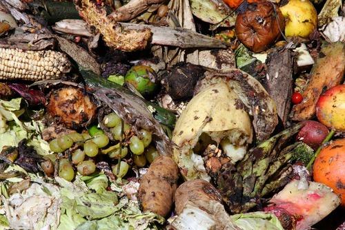 Organic Food Salt Lake City