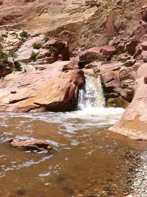 Courtesy of Talli Torgersen The waterfall on the Fremont River in Capitol Reef National Park. This photo was taken by Talli Torgersen, a nurse at Primary Children's Medical Center, who was on the scene and helped save Cody's life.