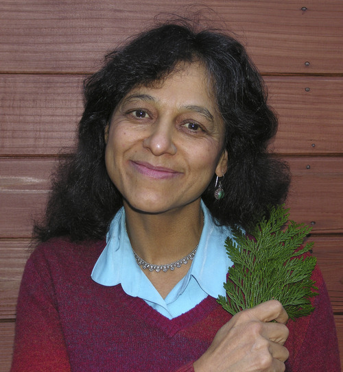 Courtesy photo Nalini Nadkarni, an expert in forest canopy research, will be joining the U.'s biology faculty and directing the Center for Mathematics and Science Education.