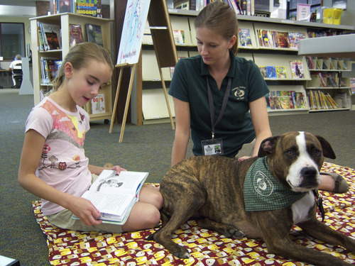 Natalie Dicou  |  Special to The Tribune Morningside Elementary School third-grader Sadie Bowen reads to Lucy, a therapy dog, at Holladay Library with Lucy's owner and trainer, Caitlin Thueson, of Therapy Dogs of Utah. Thueson brings the pit bull/boxer mix to the library every other Saturday so kids can practice their reading skills with a nonjudgmental listener.