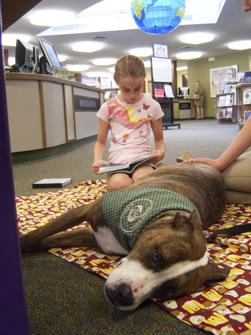 Natalie Dicou  |  Special to The Tribune Morningside Elementary School third-grader Sadie Bowen reads to Lucy, a therapy dog, at Holladay Library. Lucy's owner and trainer, Caitlin Thueson ,of Therapy Dogs of Utah, brings the pit bull/boxer mix to the library every other Saturday so kids can practice their reading skills with a nonjudgmental listener.