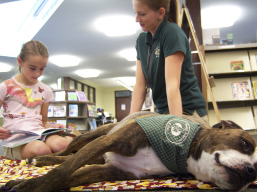 Natalie Dicou  |  Special to The Tribune Morningside Elementary School third-grader Sadie Bowen reads to Lucy, a therapy dog, at Holladay Library. Lucy's owner and trainer, Caitlin Thueson (also pictured) of Therapy Dogs of Utah, brings the pit bull/boxer mix to the library every other Saturday so kids can practice their reading skills with a nonjudgmental listener.