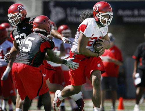Scott Sommerdorf  |  The Salt Lake Tribune Utah RB Thjretton Palamo runs the ball during the second day of pre-season camp for the Utah Utes football team, as they practice on the Rice-Eccles stadium field at the University of Utah Friday, August 5, 2011.