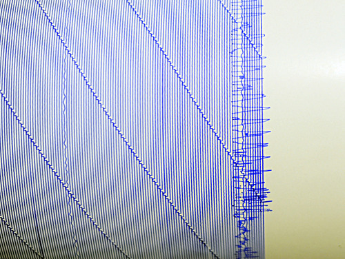 The seismograph at Cape Henry Collegiate School in Virginia Beach, Va. registered the earthquake that was felt across the Mid-Atlantic Coast on Tuesday, August 23, 2011. The strongest earthquakes ever recorded on the East Coast shook buildings and rattled nerves from South Carolina to New England. (AP Photo/The Virginian-Pilot, Amanda Lucier) MAGS OUT