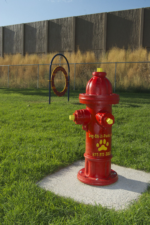 Courtesy Alex Drake A Fire Hydrant And Jumping Hoop Create Playground For Pups At South