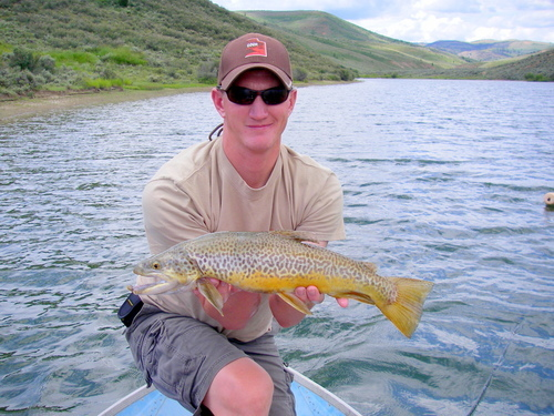 Birch creek reservoir sampling report trout over 20 for Northern utah fishing report