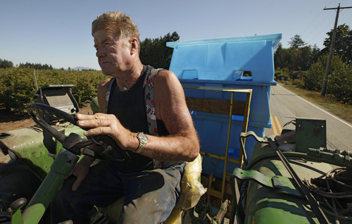 Blueberry farmer Darryl Ehlers drives down a highway in front of his farm, Wednesday, Sept. 7, 2011, near Lynden, Wash. Ehlers has put up signs on his private roads that read