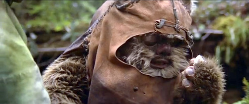 An Ewok blinks in the new