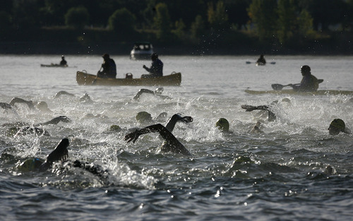 Scott Sommerdorf  |  The Salt Lake Tribune              Triathetes churn the water in Pineview Reservoir as they begin the  2011 XTERRA Nationals held at Snowbasin, Saturday, September 24, 2011. Lance Armstrong finished fifth with a time of 2:29.25.