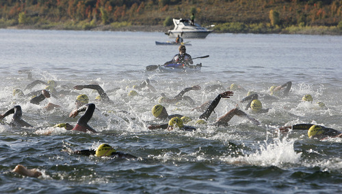 Scott Sommerdorf  |  The Salt Lake Tribune              Triathletes churn the water in Pineview Reservir as they begin the 2011 XTERRA Nationals held at Snowbasin, Saturday, September 24, 2011.