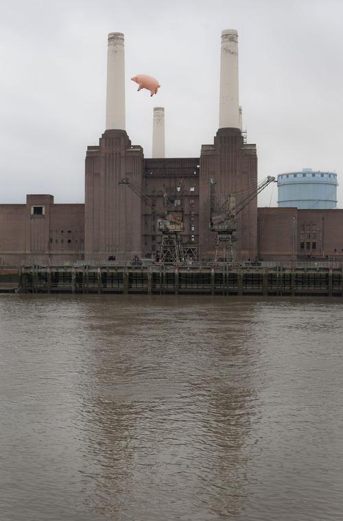Pig flies over London in Pink Floyd album tribute - The Salt