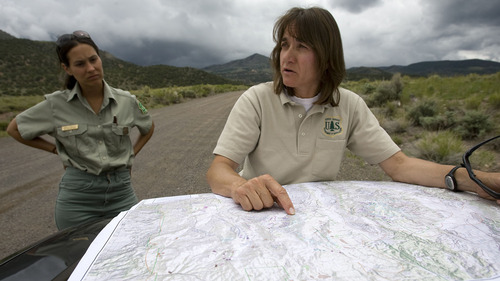 Al Hartmann  |  The Salt Lake Tribune Liz Hebertson, an entomologist with the U.S. Forest Service's Forest Health Protection Division, looks over a map indicating areas of Fishlake National Forest infested by beetles.  Danielle Reboletti, also an entomolgist, looks on at left.
