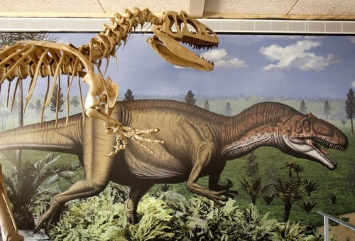 Trent Nelson  |  The Salt Lake Tribune A display on the allosaurus in the quarry building at Dinosaur National Monument, Utah, Wednesday, September 28, 2011. The new building is set to reopen on Tuesday after a long remodel.