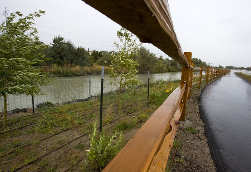 Steve Griffin  |  The Salt Lake Tribune New vegetation, protected from beavers with a metal fence, and a recreational trail flank the east side of the Jordan River in Midvale, part of a $1.1 million to revitalize the waterway west of a former Superfund slag site.