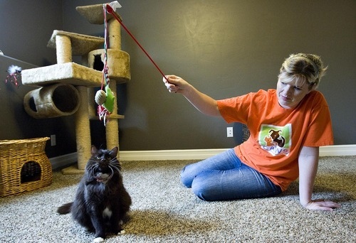 Djamila Grossman  |  The Salt Lake Tribune  Janita Coombs plays with Andrea at her Syracuse foster home. The cat survived two euthansia attempts at a West Valley City animal shelter. Coombs is taking care of her until a permanent owner can be found.