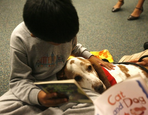 Rick Egan  | The Salt Lake Tribune   Copperview Elementary first grader, Santiago Villanova,  reads to George the dog, in the library, Wednesday, October 26, 2011.  Copperview Elementary students read with Intermountain Therapy Animals Reading Education Assistance Dogs in a program to improve their reading skills. All the kids got to wear pajamas.