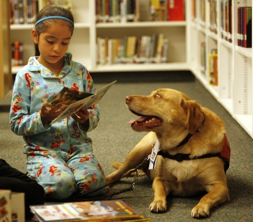 Rick Egan  | The Salt Lake Tribune   Copperview Elementary first grader Cassandra Gonzalez reads to Jack the dog, in the library, Wednesday, October 26, 2011.  Copperview Elementary students read with Intermountain Therapy Animals Reading Education Assistance Dogs in a program to improve their reading skills. Students also got to wear pajamas to school.