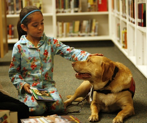 Rick Egan  | The Salt Lake Tribune   Copperview Elementary first grader Cassandra Gonzalez pats Jack the dog after reading a book to him in the library, Wednesday, October 26, 2011.  Copperview Elementary students read with Intermountain Therapy Animals Reading Education Assistance Dogs in a program to improve their reading skills. Students also got to wear pajamas to school.