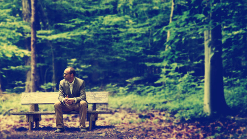 BYUTV producer Kendall Wilcox ponders what it means to be Mormon and gay, while sitting in the church's Sacred Grove in Palmyra, N.Y. (Courtesy Kendall Wilcox)