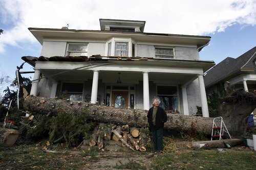 Francisco Kjolseth  |  The Salt Lake Tribune Merla Swenson, 82, overlooks the damage created to her home of 30 years at 1133 E. 200 South in Salt Lake City on Thursday. Early Thursday morning, the large pine in front of her home toppled from high winds, a tree beloved by her husband, who passed away 1 month ago. Swenson was in the process of painting her home so she could get home owners insurance coverage.