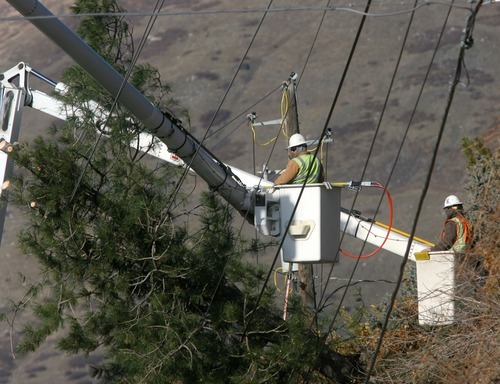 Steve Griffin  |  The Salt Lake Tribune Crews work on power lines in Centerville on Thursday after high winds downed trees along the Wasatch Front, causing power outages in Davis and Weber counties.